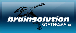 brainsolution Logo